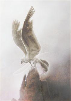 Dream Weaver by xXNamaste.deviantart.com on @deviantART