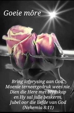 Lekker Dag, Afrikaanse Quotes, Goeie More, Christian Messages, Good Morning Wishes, Wees, Mornings, Lilac, Language