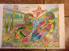 Color me your way coloring books follow on instagram @colormeyourway