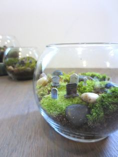 Hold Your Breath.Graveyard Moss Terrarium Miniature Terrarium Gravestones Terrarium Miniatures Grave Stones Mini Cemetary by FaerieNest on Etsy Terrariums, Moss Terrarium, Garden Terrarium, Terrarium Wedding, Creepy Halloween, Holidays Halloween, Halloween Decorations, Halloween Crafts, Halloween Diorama