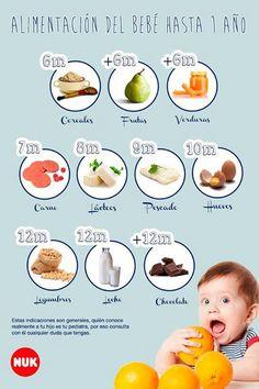 Alimentación del bebé hasta 1 año.