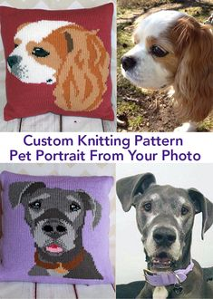 Pet Knitting Patterns Custom Knitting Pattern PDF – Pet Portrait Designed From Your Own Photograph – Sarah Holmes wil Crochet Dog Sweater, Knitted Cat, Knitted Animals, Knitted Cushion Covers, Knitted Cushions, Loom Knitting, Knitting Stitches, Crochet Cushion Pattern Free, Knitting Patterns For Dogs