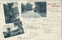 AK NEUHÄUSER Kreis Fischhausen, WALDKRUG, Königsberg OSTPREUSSEN 1905 POSTKARTE