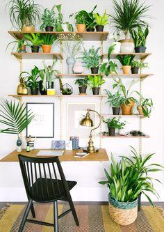 Green Home Office Inspiration · Workspace Design · Creative Studio · Artist Desk · Plant Decor Plant Wall, Plant Decor, Wall Of Plants, Hanging Plants, Interior Plants, Interior Design, Modern Interior, Studio Interior, Design Interiors