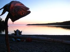 Photo thumbnail: Lord of the lake trout. Fishing Maps, Fish Stock, Lake Superior, Trout, Lord, Brown Trout