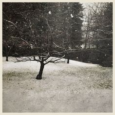 iPhoneography  Last Squall – Armin Mersmann