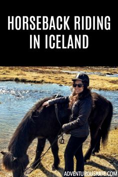 After learning about Icelandic horses, I thought going horseback riding would be a nice activity to try.  Icelandic horses have been carefully bred for thousands of years into a style that you don't see anywhere else in the world.  They're pretty much the Robin Williams of horses: short, furry, and full of boundless energy.