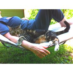 {Mer the cat knows where its at!} and I obviously need to get a hammock.