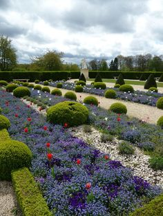 Parterre of tulips and forget-me, topiary, formal garden in front of the Orangerie of the Parc de Sceaux, Hauts-de-Seine, April 21, 2012, picture Alain Delavie