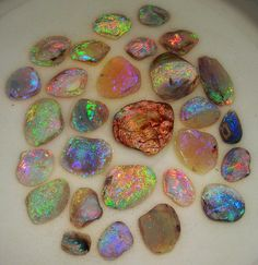 Opals and Opaline Materials Minerals And Gemstones, Rocks And Minerals, Crystal Magic, Rock Collection, Rocks And Gems, Stones And Crystals, Gem Stones, Shells, Jewelry