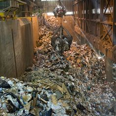 Does Burning Garbage to Produce Electricity Make Sense? - Scientific American  cassidy's group