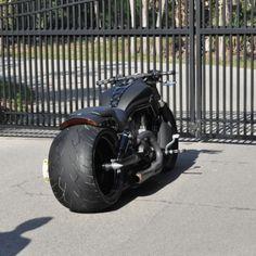 V Road Muscle Harley Davidson 00123