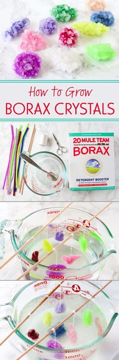 to Grow Borax Crystals Growing Borax crystals is a fun science experiment that you can do easily and cheaply at home!Growing Borax crystals is a fun science experiment that you can do easily and cheaply at home! Kid Science, Cool Science Experiments, Preschool Science, Science Fair, Summer Science, Borax Experiments, Science Crafts For Kids, At Home Crafts For Kids, Physical Science