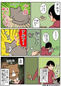 埋め込み画像 Cat Comics, Funny Cats, Funny Pictures, Cute Animals, Cartoon, Humor, Illustration, Unique, Animals