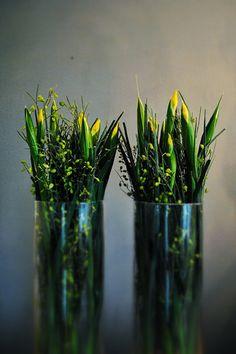p o r t f o l i o | tabea maria-lisa / floristik & dekoration