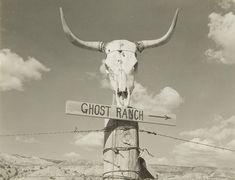 Sun Prairie, Alfred Stieglitz, Georgia O Keeffe, Global Style, American Artists, New Mexico, Natural Beauty, Ranch, Moose Art