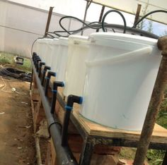 How to build a Dutch Bucket plant grow area for your Aquaponics System - MyAquaponics