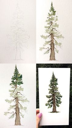 Watercolor Pine Tutorial - Mini tutorial of a pine with step by step process ph. - Watercolor Pine Tutorial – Mini tutorial of a pine with step by step process photos. Watercolor Tips, Watercolour Tutorials, Watercolor Techniques, Watercolor Paintings, Watercolours, Watercolour Step By Step, Christmas Watercolour, Tree Watercolor Painting, Watercolor Beginner