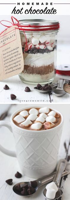 This Homemade Hot Chocolate Mix is super creamy and SO delicious! Make a big batch for the winter or just a single serving, OR give it as gift for the holidays! | LoveGrowsWild.com