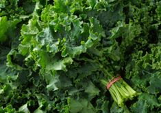 best veggies for superior bone health