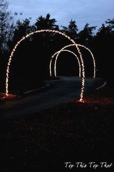 Christmas Lights Ark for your pathway