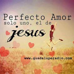 Frases Bonitas Para Facebook: El Amor Perfecto