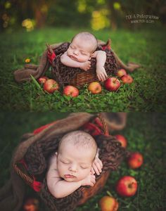 Mok-A Photography - Newborn - Apple Orchard