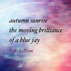 Gems Anthology, 2014 Bamboo Hut Press #haiku #nature #poetry #poemoftheday #micropoetry #birds #autumn #ilovefall #bluejays #poemsofinstagram #grleblanc