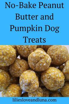 Easy, no-bake pumpkin and peanut butter dog treats. dog treats peanut butter Pumpkin and Peanut Butter Dog Treats No Bake Dog Treats, Peanut Butter Dog Treats, Puppy Treats, Diy Dog Treats, Healthy Dog Treats, Pumpkin Dog Treats Homemade, Soft Dog Treats, Treats For Puppies, Peanut Butter Dog Biscuits