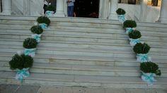 ΣΤΟΛΙΣΜΟΣ ΓΑΜΟΥ - ΒΑΠΤΙΣΗΣ :: Στολισμός Γάμου Θεσσαλονίκη και γύρω Νομούς :: ΣΤΟΛΙΣΜΟΣ ΣΤΑ ΧΡΩΜΑΤΑ ΤΗΣ ΜΕΝΤΑΣ - ΤΡΑΠΕΖΙ ΜΠΟΜΠΟΝΙΕΡΩΝ ΚΩΔ.: SG-0224