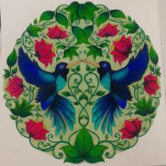 Finalmente pronto! Livro: Jardim Secreto Lápis: Happy Time Colorido por: @luizaqueiiroz #secretgarden #JardimSecreto #Colorir #Colorindo #FlorestaMagica #florestaencantada