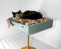 Upcycled Suitcase Pet Bed with Pedestal Base by AtomicAttic, $179.00