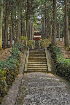 the approach to Taiseki-jij temple, Shizuoka, Japan