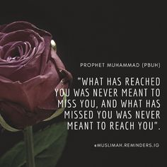 Prophet Muhammad, Miss You, Quotes, I Miss U, Quotations, I Miss You, Quote, Shut Up Quotes