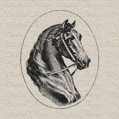 Digital Download for Iron on Transfer Horse Equestrian Profile Portrait Printable Tea Towel Fabric Pillows DT002. $1.00, via Etsy.