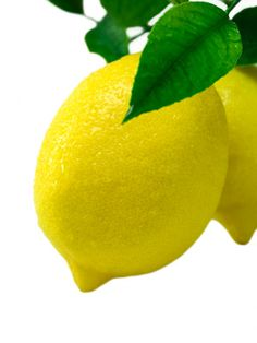 Power of the Lemon