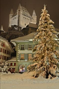 Thun, Switzerland, beautiful Christmas display.....