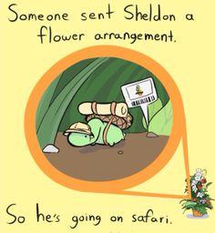 The Adorable Comic Strips Of Sheldon The Tiny Dinosaur Cute Comics, Funny Comics, Fandoms, Turtle Dinosaur, Sheldon The Tiny Dinosaur, Dinosaur Funny, Funny Cute, Hilarious, Funny Vid