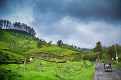 Pallivasal, Munnar #Kerala