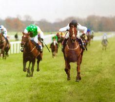 Inherent winning at Newbury, 14 December 2005