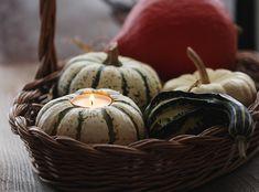 Herbstzauber ~ Kürbisdeko