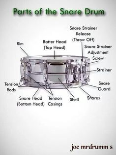 Anatomy of Snare Drums Drum Parts, Westhampton Beach, Brass Band, Snare Drum, Percussion, Music Stuff, Drums, Guitar, Drum Kit