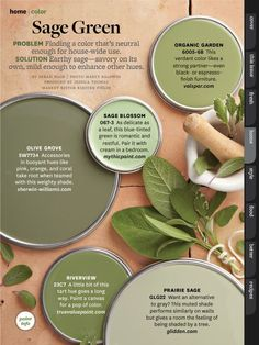 Top Kitchen Trends Prediction for 2018 &; New Kitchen Concept Top Kitchen Trends Prediction for 2018 &; New Kitchen Concept Alina alinarurup Wohnen kitchen trends 20018 kitchendesign trends in the […] room colors green Sage Green Paint, Green Paint Colors, Kitchen Paint Colors, Green Kitchen Paint, Sage Green House, Sage Green Walls, Gray Green, Green Accent Walls, Green Farm