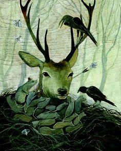 Polanshek - Tangled in the White Wood