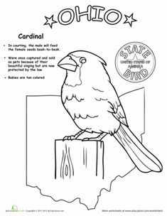Ohio State outline Coloring Page Copy the image and paste