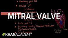 Mitral valve regurgitation and mitral valve prolapse (video) Health Heal, Heart Health, Joshua Cohen, Mitral Valve Regurgitation, Prolapse Exercises, Heart Valve Disease, Mitral Valve Prolapse, Cardiac Sonography, Heart Valves