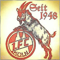 1. FC Köln seit 1948 🐐 Fc Köln Logo, Football Soccer, Picture Tattoos, Tattoo Drawings, Small Tattoos, Tattoos For Women, Lego, My Favorite Things, Sports