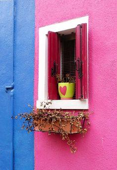 Window love !