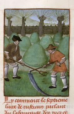 Peasants mowing