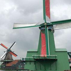 Hello windmills!  #DivainAmsterdam #Amsterdam #video #windmills #ZaanseSchans #travel #travelphotography http://tipsrazzi.com/ipost/1523802196033244358/?code=BUlogYahYzG